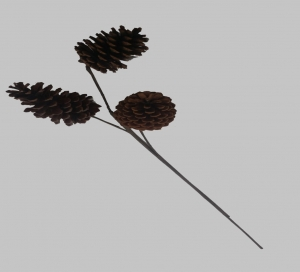 Pine cone pick