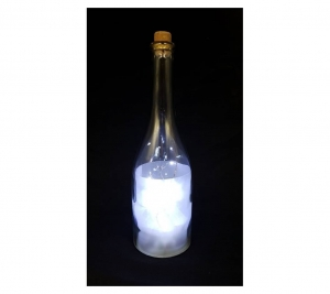 Glass Bottle PW 28cm