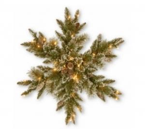Bristle Snowflake