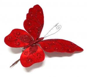 N Butterfly 2