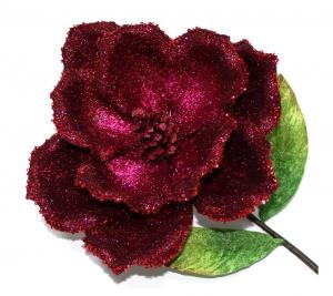 N Poinsettia 1