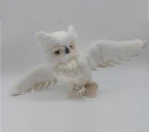 Owl Flying 2